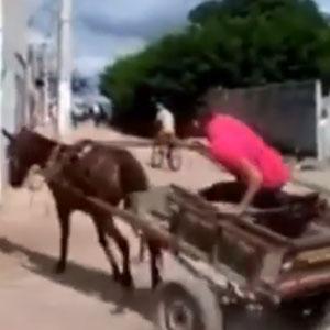 Origem do Cavalo de Pau