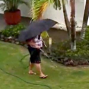 É pra aguar todo dia, que não chover né!
