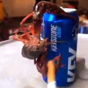 Virei amigo desse caranguejo