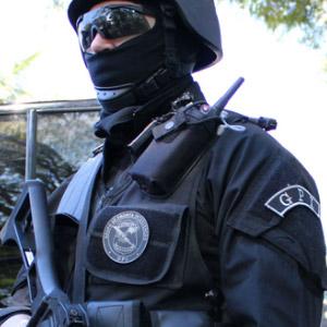 Polícia Federal, venho por meio desta